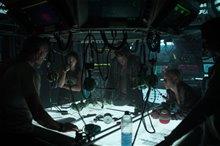 Underwater Photo 14