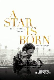 Une étoile est née Photo 13