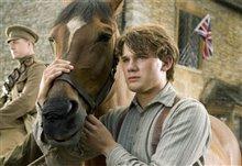 War Horse Photo 3
