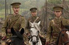 War Horse Photo 5