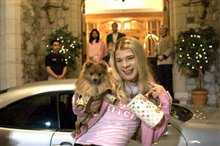 White Chicks Photo 10