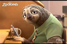 Zootopia photo 18 of 24