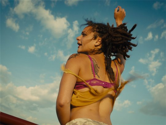 American Honey Poster Large