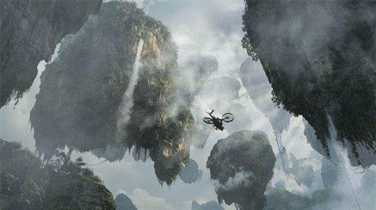 Avatar Photo 7 - Large