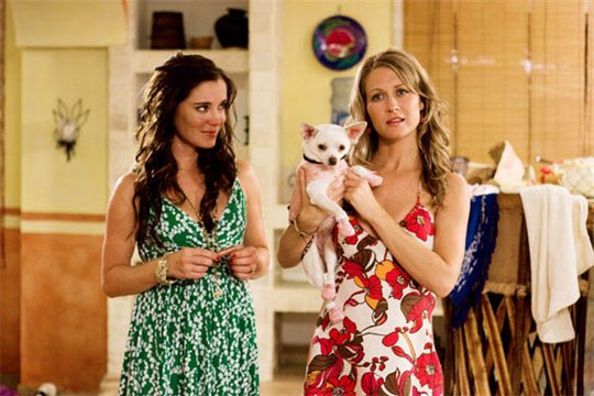 Beverly Hills Chihuahua Photo 11 - Large