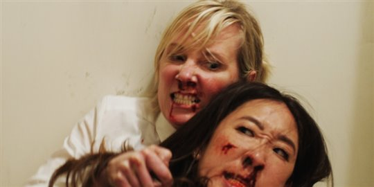 Catfight Poster Large