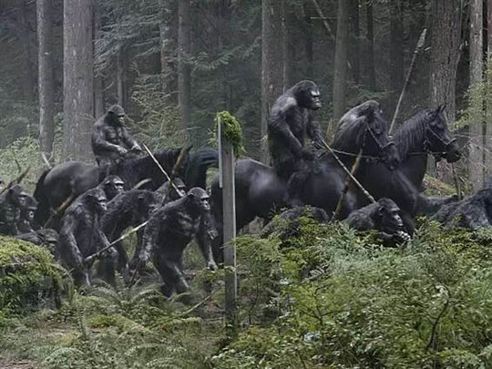 Dawn of the Planet of the Apes Photo 2 - Large