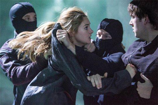 Divergent Photo 6 - Large