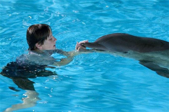 Dolphin Tale Poster Large