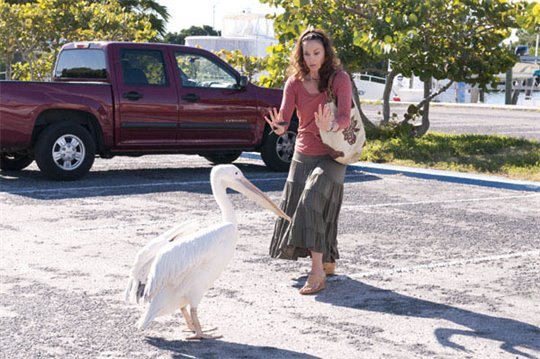 Dolphin Tale Photo 23 - Large