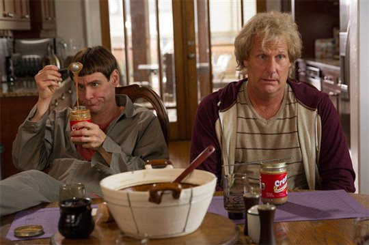 Dumb and Dumber To Poster Large
