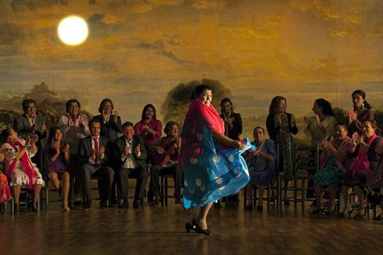 Flamenco, Flamenco Photo 7 - Large