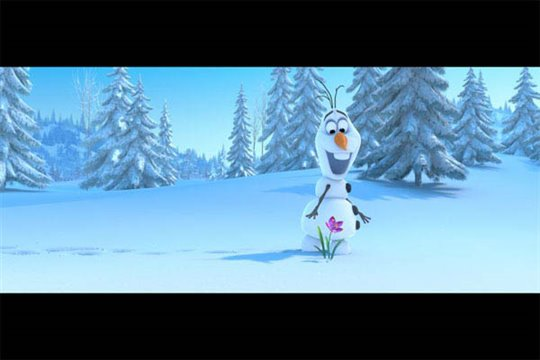 Frozen Photo 23 - Large