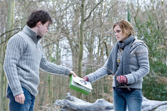 Harry Potter and the Deathly Hallows: Part 1 Photo 14 - Large