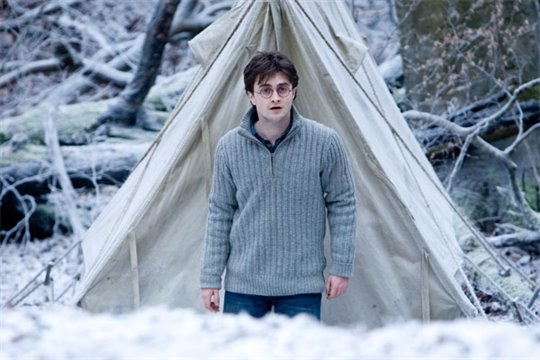 Harry Potter and the Deathly Hallows: Part 1 Photo 36 - Large