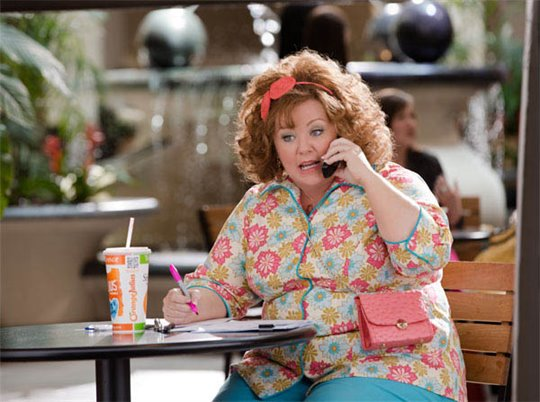 Identity Thief Photo 7 - Large