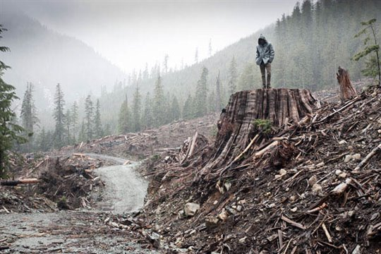 If a Tree Falls: A Story of the Earth Liberation Front Photo 1 - Large