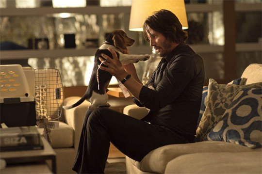 John Wick Photo 9 - Large