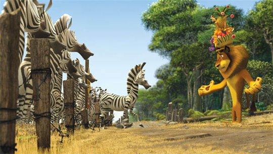 Madagascar: Escape 2 Africa Photo 8 - Large