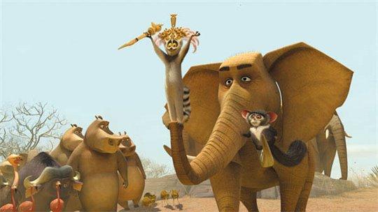 Madagascar: Escape 2 Africa Photo 20 - Large