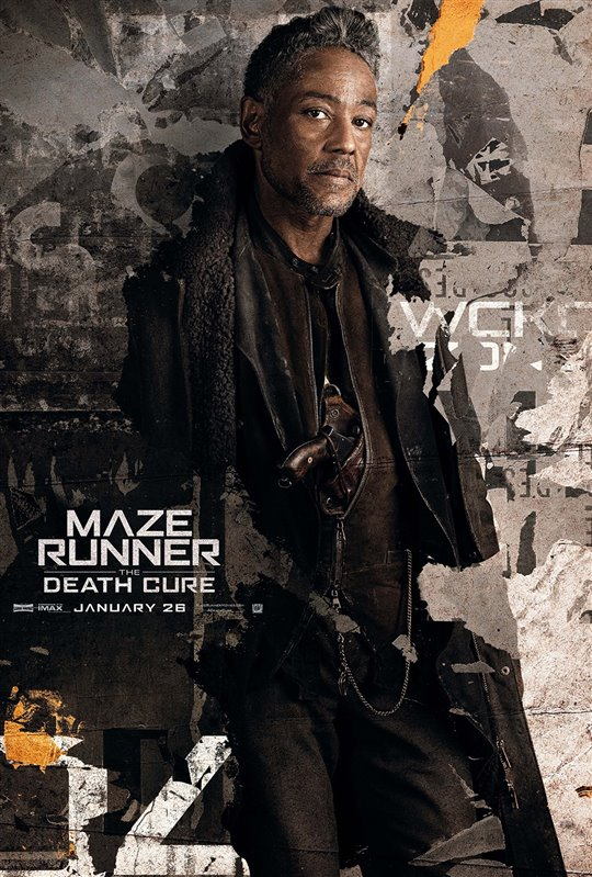 Maze Runner: The Death Cure Poster Large