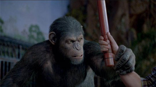 Rise of the Planet of the Apes Photo 1 - Large