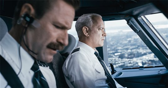 Sully Poster Large
