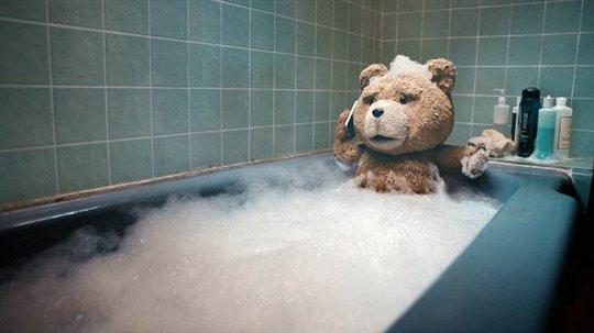 Ted Photo 8 - Large