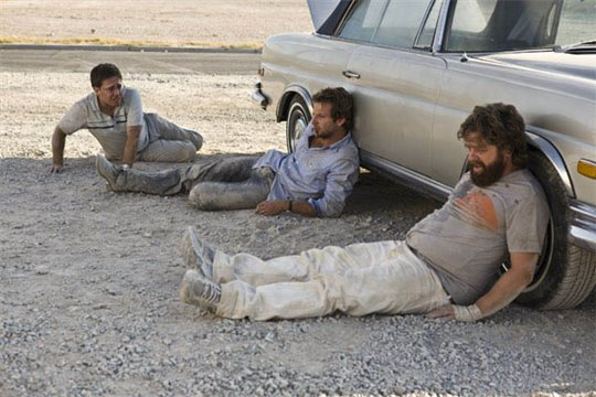 The Hangover Photo 2 - Large