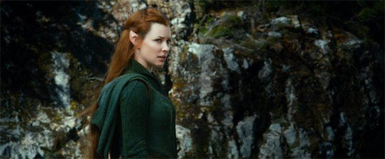 The Hobbit: The Desolation of Smaug Photo 1 - Large