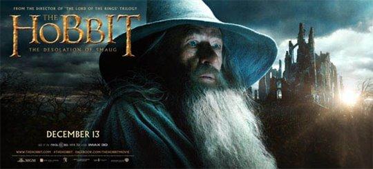 The Hobbit: The Desolation of Smaug Photo 11 - Large