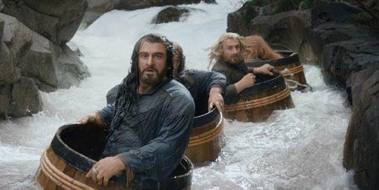 The Hobbit: The Desolation of Smaug Photo 17 - Large