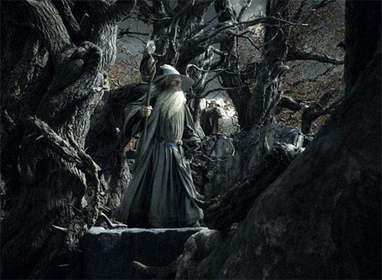 The Hobbit: The Desolation of Smaug Photo 37 - Large