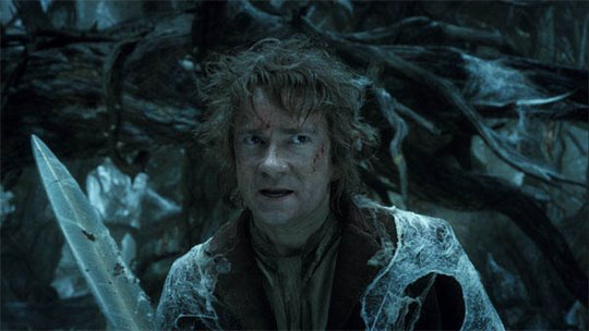 The Hobbit: The Desolation of Smaug Photo 39 - Large