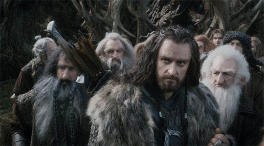 The Hobbit: The Desolation of Smaug Photo 41 - Large