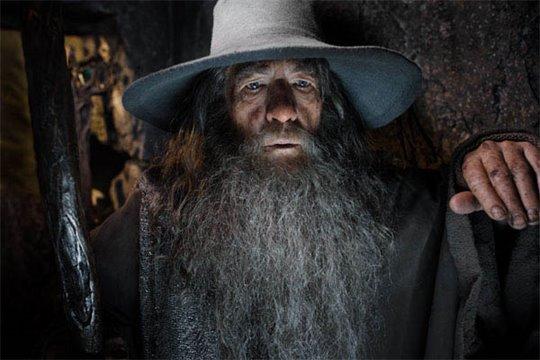 The Hobbit: The Desolation of Smaug Photo 45 - Large