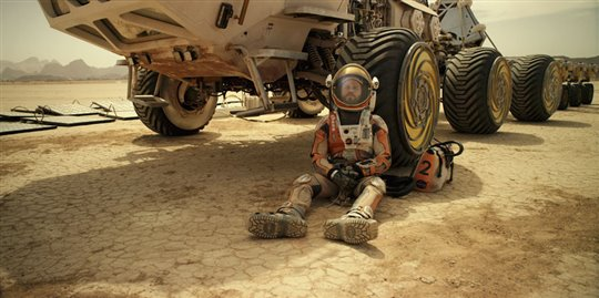 The Martian Poster Large