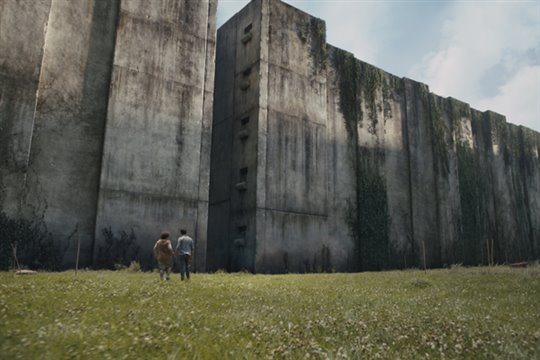 The Maze Runner Photo 1 - Large