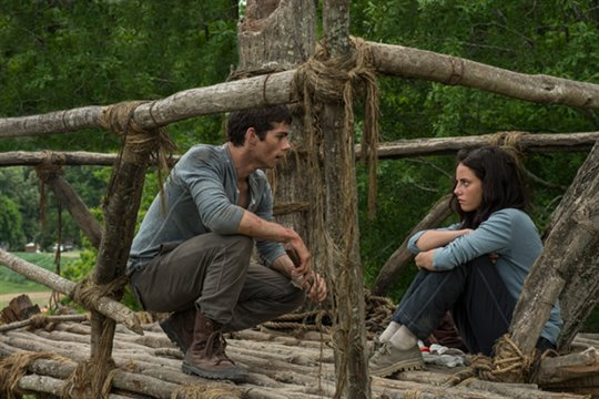 The Maze Runner Photo 3 - Large