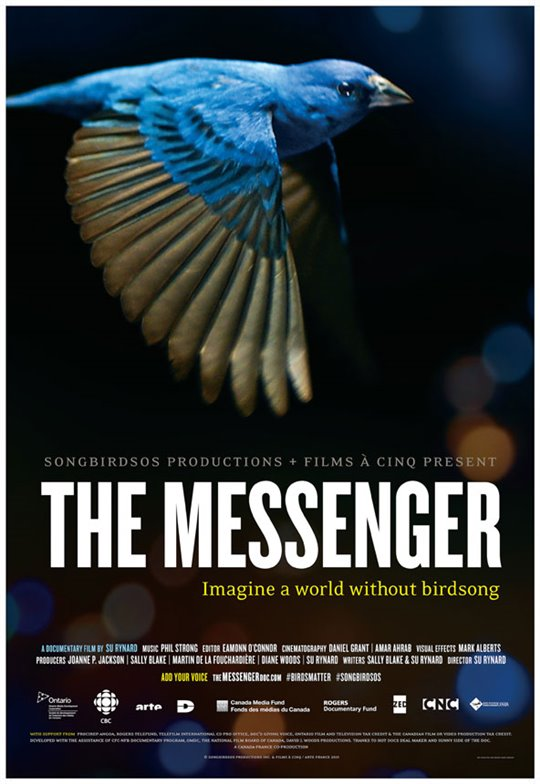 The Messenger Poster Large