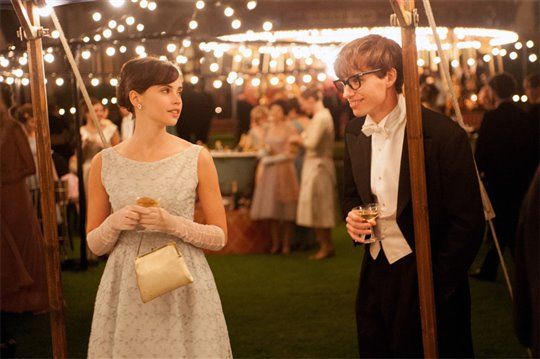 The Theory of Everything Poster Large