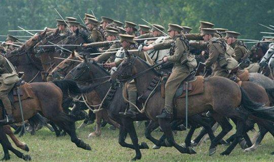 War Horse Photo 11 - Large
