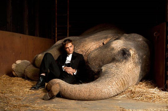 Water for Elephants Poster Large