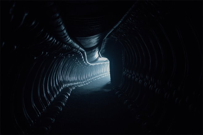 Alien: Covenant Photo 2 - Large
