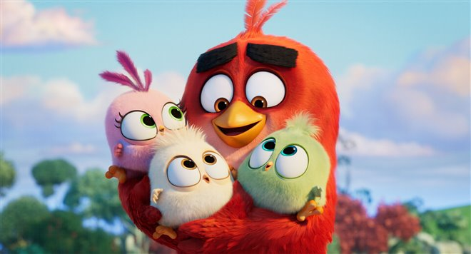 Angry Birds : Le film 2 Photo 2 - Grande
