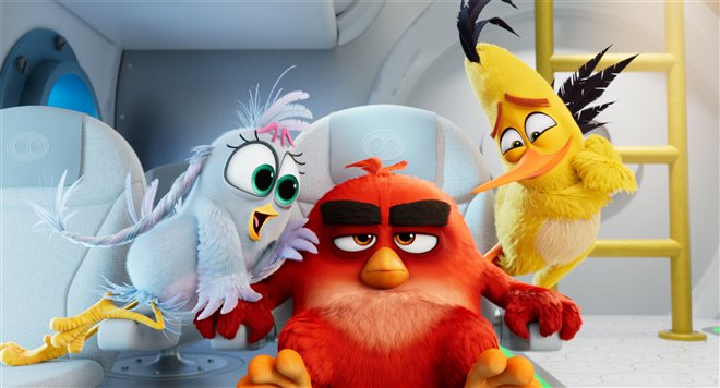 Angry Birds : Le film 2 Photo 8 - Grande