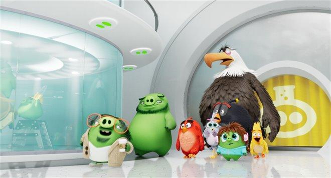 Angry Birds : Le film 2 Photo 10 - Grande