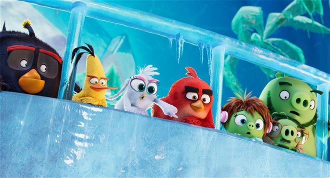 Angry Birds : Le film 2 Photo 14 - Grande