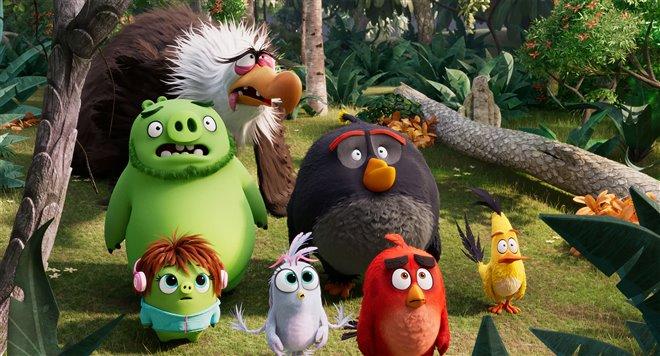 Angry Birds : Le film 2 Photo 20 - Grande