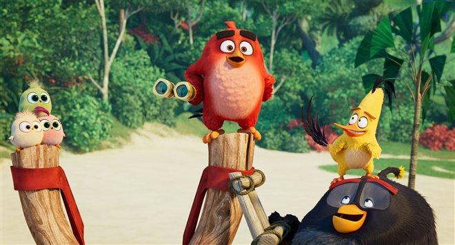 Angry Birds : Le film 2 Photo 30 - Grande